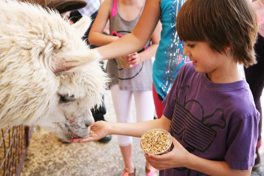 Coupon codes for fort worth zoo